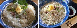 鎌倉グルメしらす丼